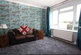 Lovely Double Room for Rent - Ifield - Crawley
