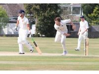 Cricketer wanted Cricket players play League Friendly Midweek Weekdays Sat/Sun Regular Great Club