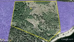 31 acres on Colleymount Road
