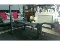 Weight bench + sit up bench