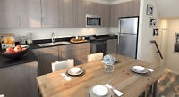 Pet Friendly Brand New 2+ Bedroom Town House with Basement