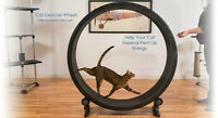One Fast Cat Exercise Wheels For Sale
