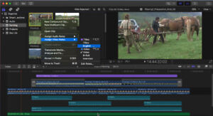 100 dollars for teaching me how to import/export with Final Cut