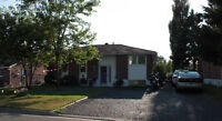 Beautiful Chelmsford home, large yard, So much to offer!