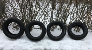 MotoMaster Winter Edge Tires