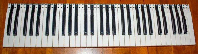 Fatar tp/80 Waterfall KeybedHome Organ professional Keyboard.