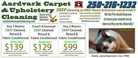 CARPET CLEANING,  Clean for spring, or just moving?