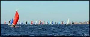 Sailing Partner F18 Catamaran Racing Botany Bay Sundays Eastern Suburbs Preview