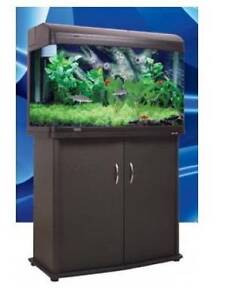 For Sale Large Aquarium Setup - Can Be Used For Fish as I Did or Forrestdale Armadale Area Preview