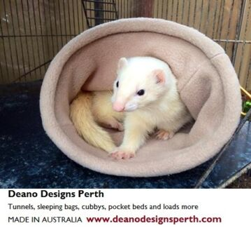 Need FERRET beds....check ours! West Perth Perth City Preview
