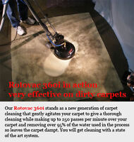 Professional Carpet/Upholstery/Tile Grout Cleaning