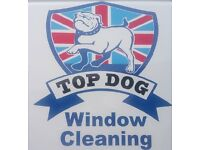 Commission based window cleaning sales job starting asap.