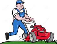 Premium Lawn Care  Grass Cutting Services