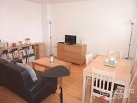 Lovely 3 bedroom property newly renovated in zone 1