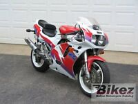 I would like to trade my suzuki gxsr for a newly born puppie