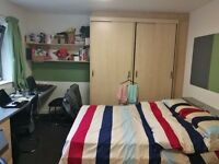 Liverty Living at Sir Charles Groves Hall, premium studio, student accomodation, all bill included