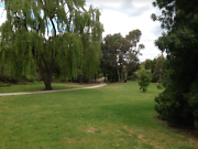 Melbourne Dog Minding - Idyllic Park-Side Location in Yarraville Yarraville Maribyrnong Area Preview