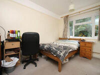3 bed flat, one double room available £455 all b.i