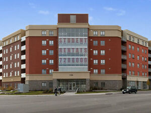 3 bedroom shared apartment with 2 available rooms in OSHAWA