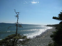 340 ft of Oceanfront  in West Jeddore  $99,000 - 55 min from Hal