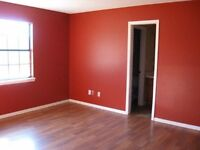 Painting and decorating services, Building work, Partition walls, Plastering.