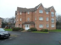 2 bed apartment Solihull looking for 2bed house