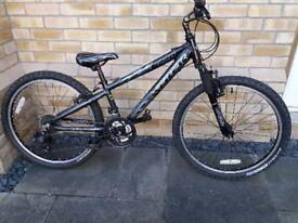 Trek M220 Childs Mountain bike.