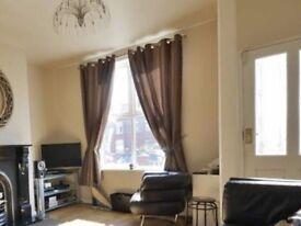 Brown stripe curtains 168 x 228