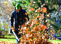 Kase Landscaping - Eavestrough and lawn clean up