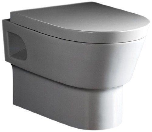 Wall Mount Toilet Ebay