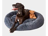 Pup naps dog bed