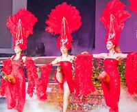 Entertainment for your event. Professional Dance show.