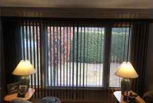 CHECK OUT THESE CUSTOM VERTICAL BLINDS!!