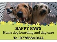 Happy Paws dog sitting and boarding