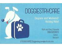 Dog daycare, weekend/holiday hotel