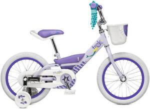 Girls Trex Bike with Basket