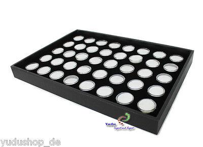 Schaukasten mit 40 Dosen Vorlagebrett Sammelkasten Schaustoffschicht