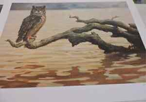 The watchman -great horned owl print - jim lamb