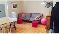 Beautiful Newly Renovated Apartment For Sublet  - McGill Ghetto