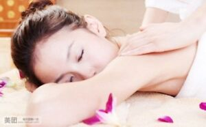 Massage or acupuncture for pain or relax $50/h cash!