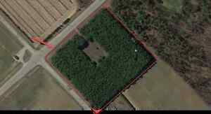 Check it out! 5 acre country, corner, estate lot