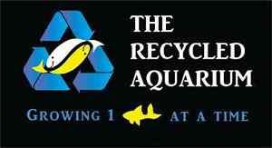 The Recycled Aquarium