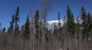 4.7 Acres 15 mins sth of Golden. Private & level building site