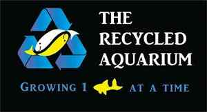 The Recycled Aquarium