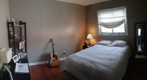 Looking for 1 Roommate for 2 BR apt 600/m START JAN 1st 2017 Kitchener / Waterloo Kitchener Area image 2