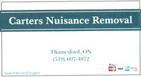 Carters Nuisance Removal ( Pest Control )