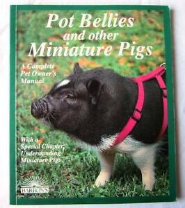 Pot Bellies and other Miniature Pigs: A complete Pet Owner