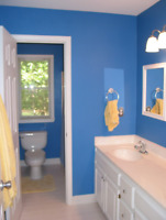 Experienced painter looking for work. As well as Tile
