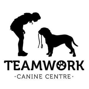 Work With Dogs - Employment Opportunities at Training Centre