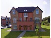 Modern 2 Bedroom Apartment for Rent | Coleraine